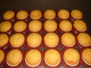 233 Muffins