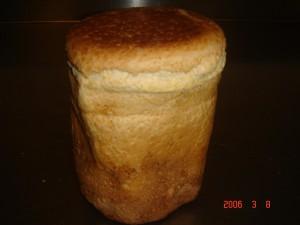 506 Squa brood